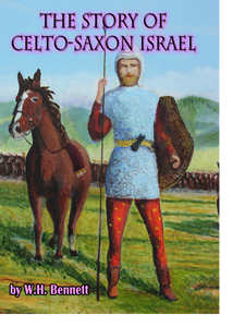 Story Of Celto-Saxon Israel book cover