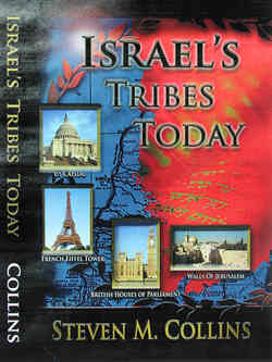 Israel's Tribes Today book cover